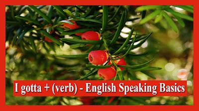 I gotta + (verb) - English Speaking Basics