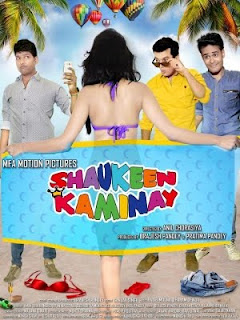 Shaukeen Kaminay (2016) Hindi Movie MP3 Songs Download