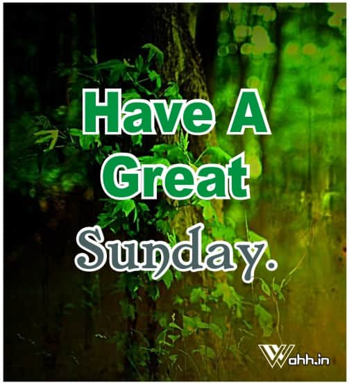Have-A-Great-Sunday