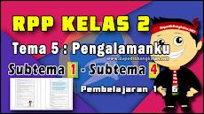 RPP kelas 2 tema 5 pengalamanku Subtema 1 - 4 K13 revisi 2019