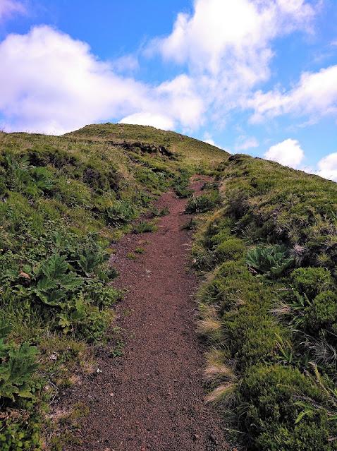 Subida al Pico do Carvao en Sao Miguel (Açores)