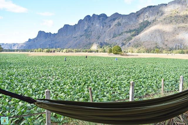 Vistas desde la terraza de Thongdam Guesthouse, Laos