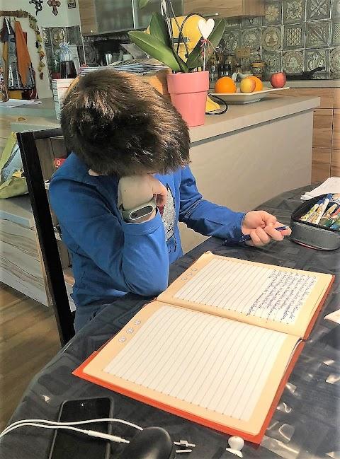 Los fallos de la educación virtual en la cuarentena por el COVID-19