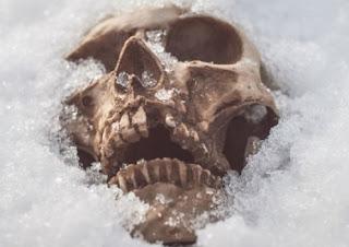Il ghiaccio sciolto ha portato alla luce resti fossili di mammut e altri animalipleistocenici