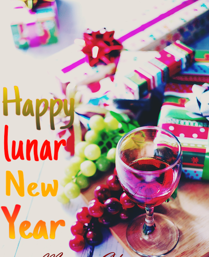 Lunar New Year's Celebration in the World