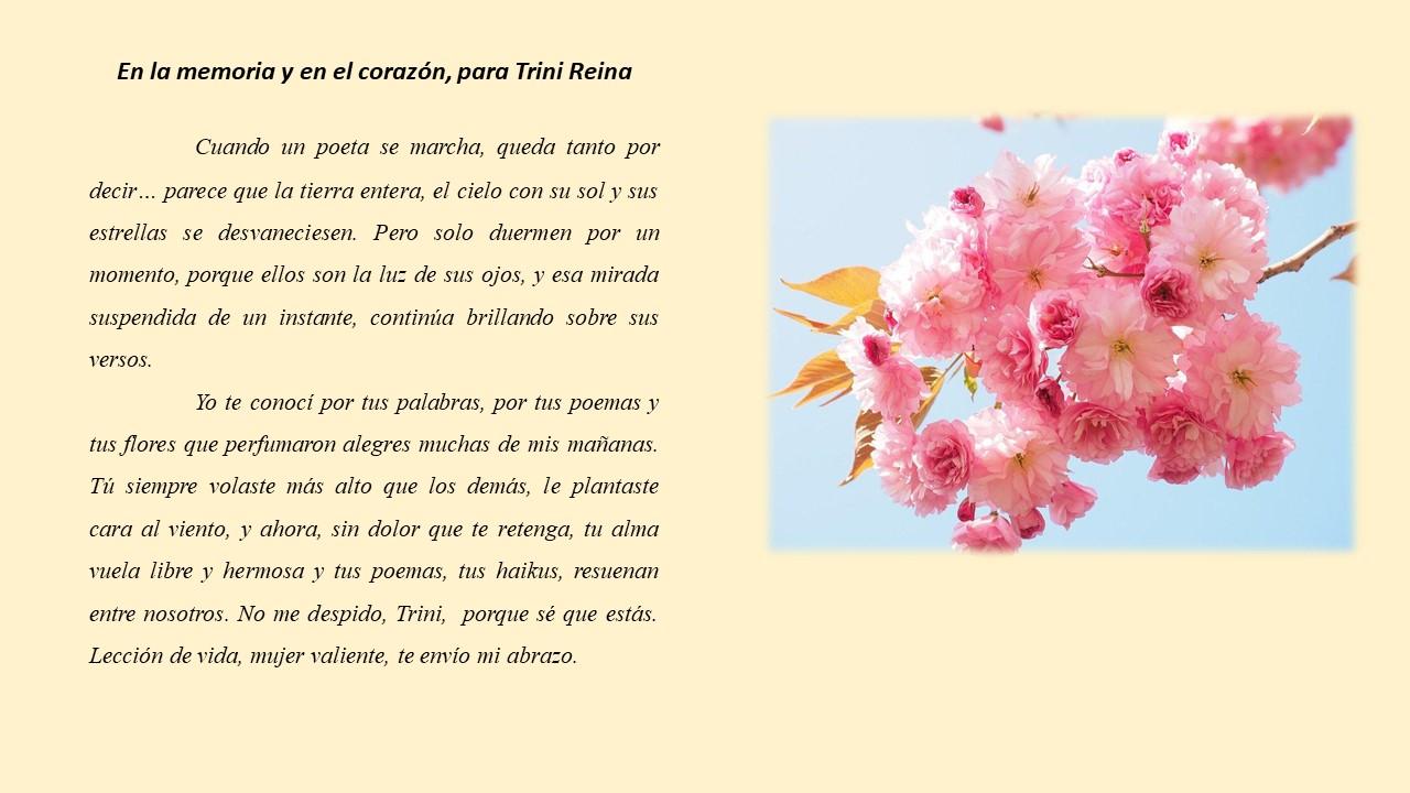 Camila sintió vergüenza al pedir su flor