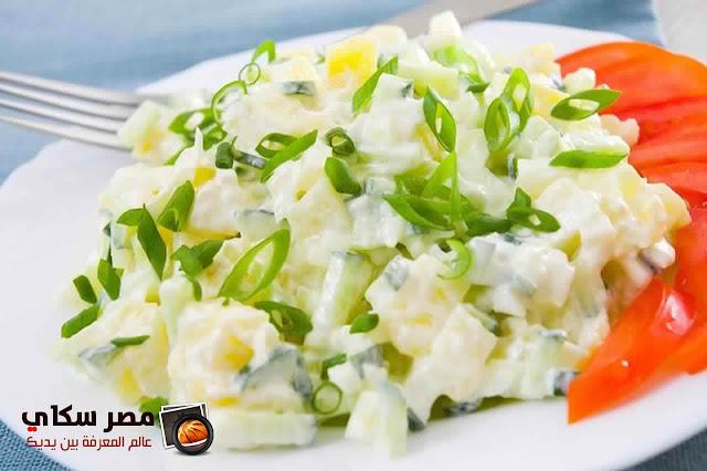 أنواع الصلصات التى تستخدم فى تتبيل سلطة البطاطس Potato salad