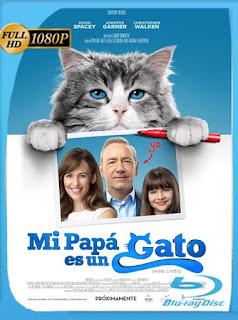 Mi papá es un gato (2016) HD [1080p] Latino [GoogleDrive] DizonHD
