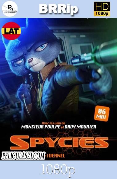 Spycies (2019) HD BRRip 1080p Dual-Latino