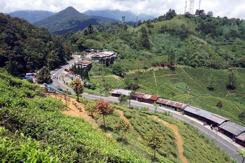 Hari Biasa Waktu Yang Pas Berwisata Ke Puncak Bogor