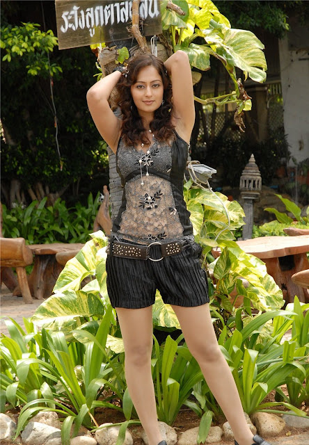 Tollywood Actress Kaveri Jha Latest Hot Pics Actress Trend