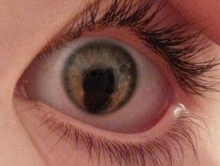 Manfaat Daun kelor untuk mata, Cara mengolah daun kelor untuk obat
