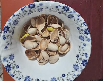 DIY with pista shells