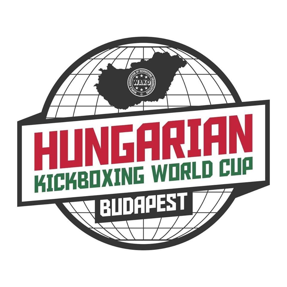 Cenna lekcja na Pucharze Świata w Budapeszcie