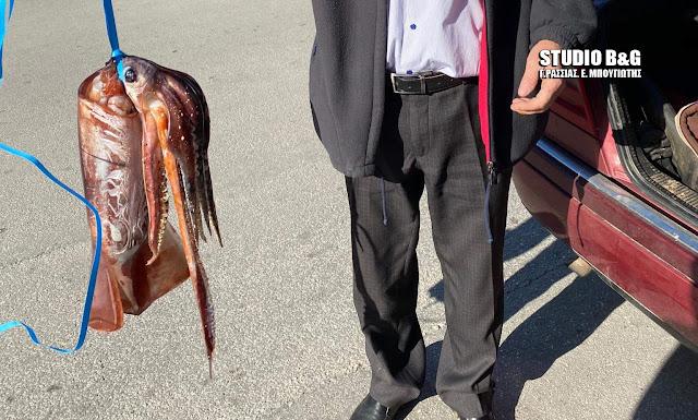 Συνεχίζεται η επέλαση τεράστιων καλαμαριών στο Ναύπλιο - Ακόμα ένα περιστατικό που ξαφνιάζει