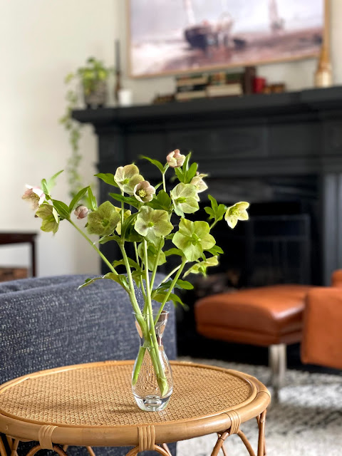 vase of lenten roses on a small table