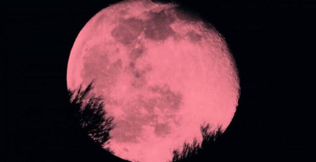 Stanotte è Super Luna Rosa, la vedremo più grande del 7%