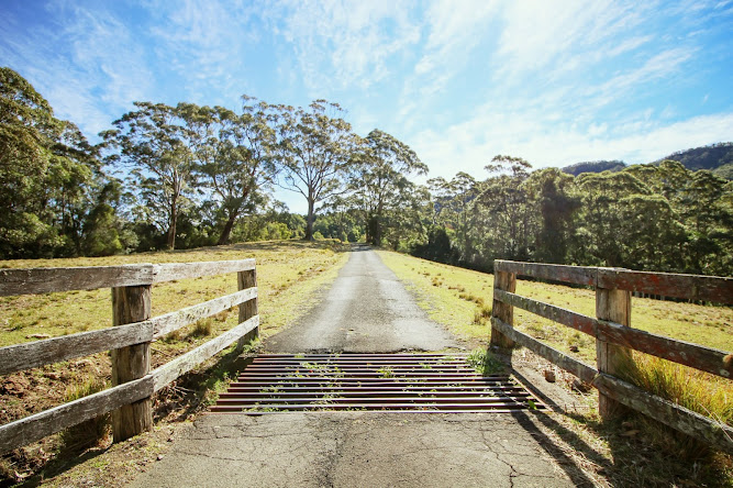 Hoddles Track Bushwalk Entrance