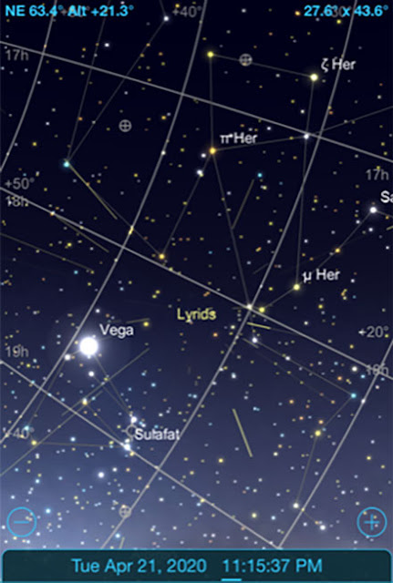 We can use Vega to identify the radiant for the Lyrid meteor shower (Source: Sky Safari Pro)