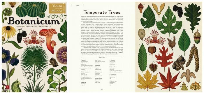 los mejores libros informativos para niños, libros conocimientos botanica, plantas, flores, árboles