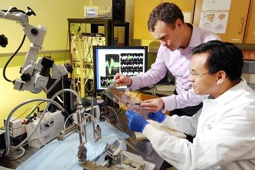 Jurusan Teknik Biomedik
