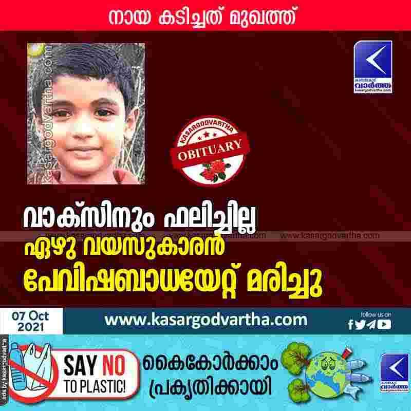 Seven-year-old boy died