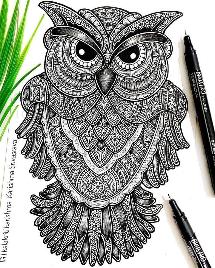 03-Stern-Owl-Karishma-Srivastava-www-designstack-co