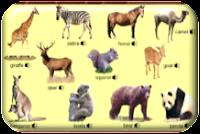 http://www.learningchocolate.com/en-gb/content/animals-2?st_lang=en