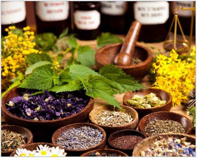 Ramuan Herbal Untuk Anak