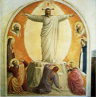 Dominican Life on Lotus Lane: Transfiguration of Our Lord