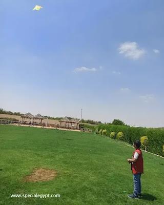 مساحات خضراء مدرسة هابى ورلد