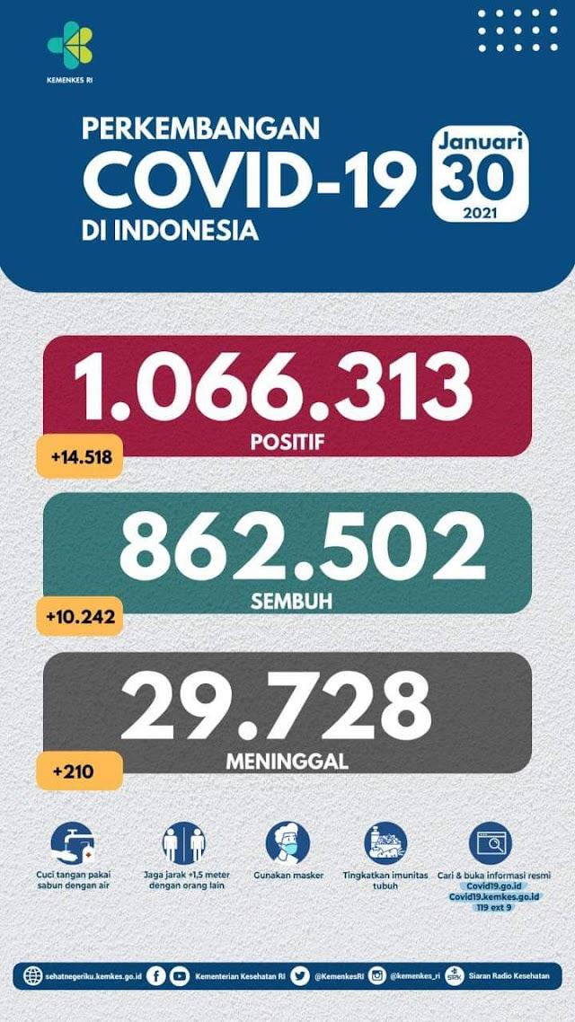 (30 Januari 2021) Jumlah Kasus Covid-19 di Indonesia