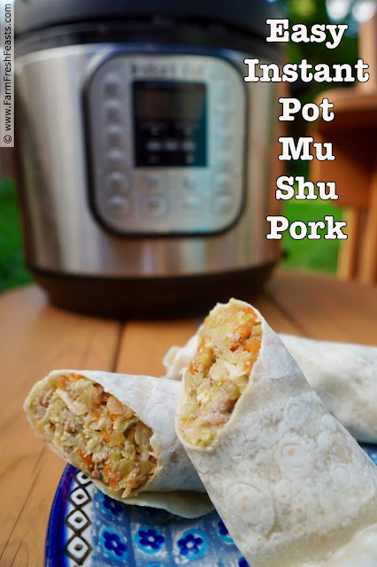 Easy Instant Pot Mu Shu Pork is a simple meal consisting of pork, cabbage, and eggs seasoned with plummy hoisin sauce and served with a Chinese pancake. Skip the restaurant and control your own ingredients by making this quick dish!