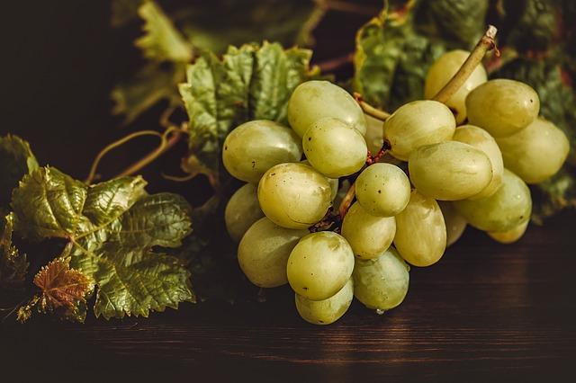 فائدة صحية للعنب