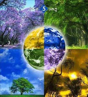 Impactos das alterações climáticas para a saúde pública