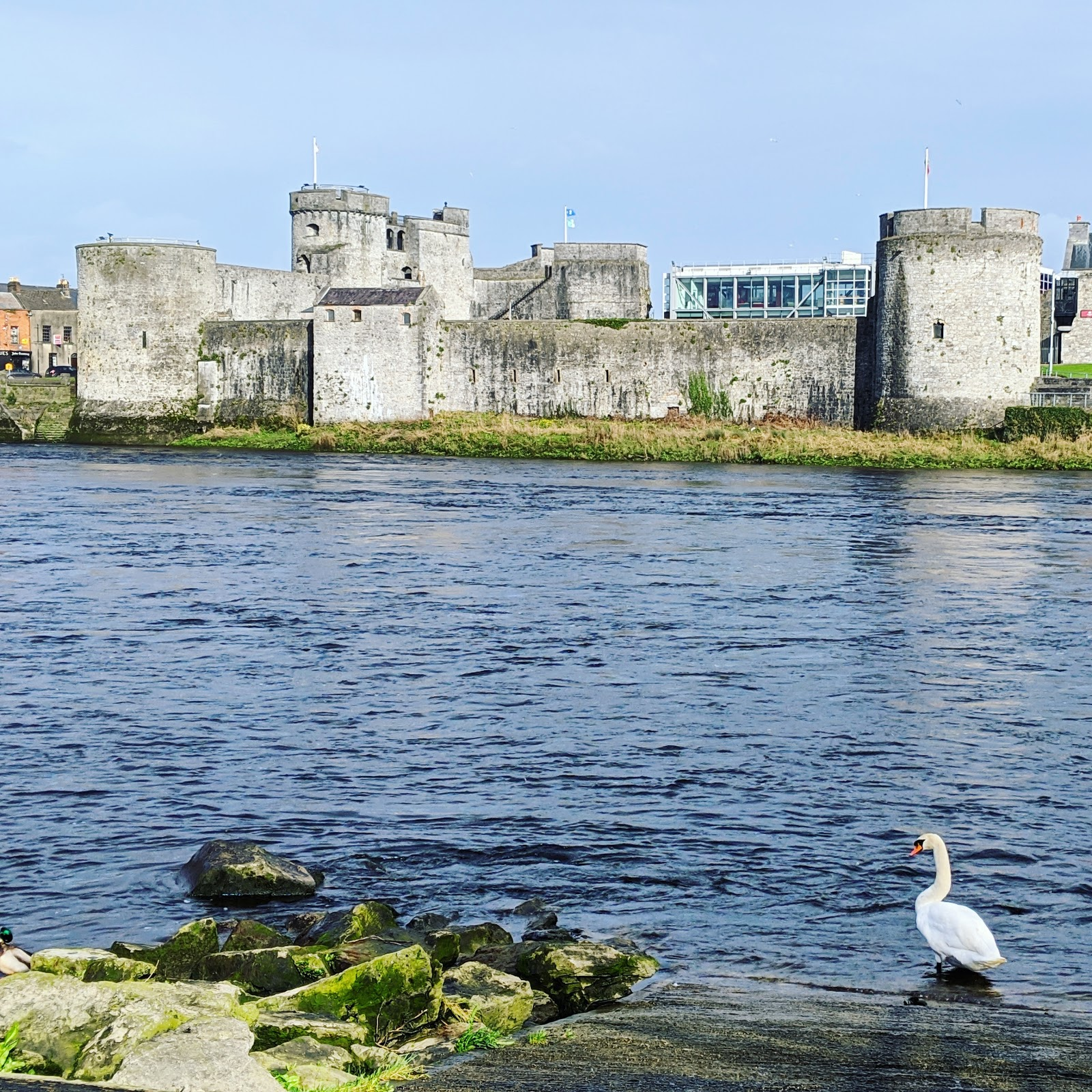 Where to meet the love of your life in Ireland - IrishCentral