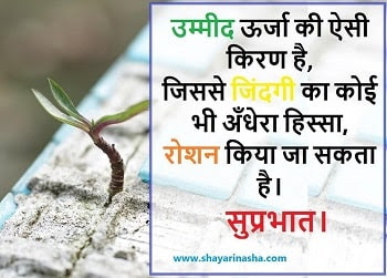 Suprabhat Whatsapp DP status for beautiful Good Morning messages.
