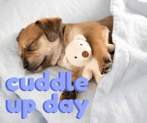 National Cuddle Up Day Wishes Awesome Picture