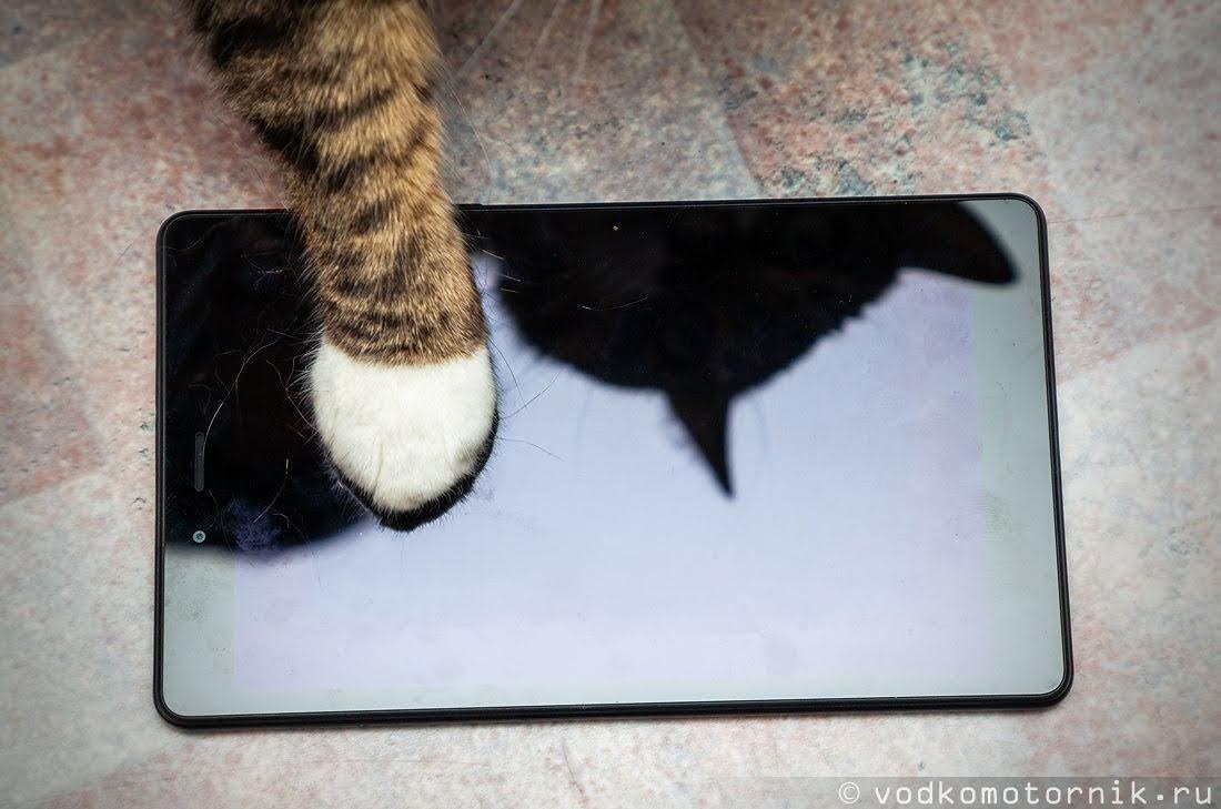 Экран у Samsung Galaxy Tab A 8 стеклянный - просто так не поцарапаешь, даже острым когтем