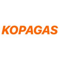 Database Administrator at KOPAGAS Tanzania