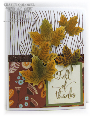 CraftyColonel Donna Nuce for Cards in Envy Fall Challenge, Close To My Heart Pathfinding Card kit.