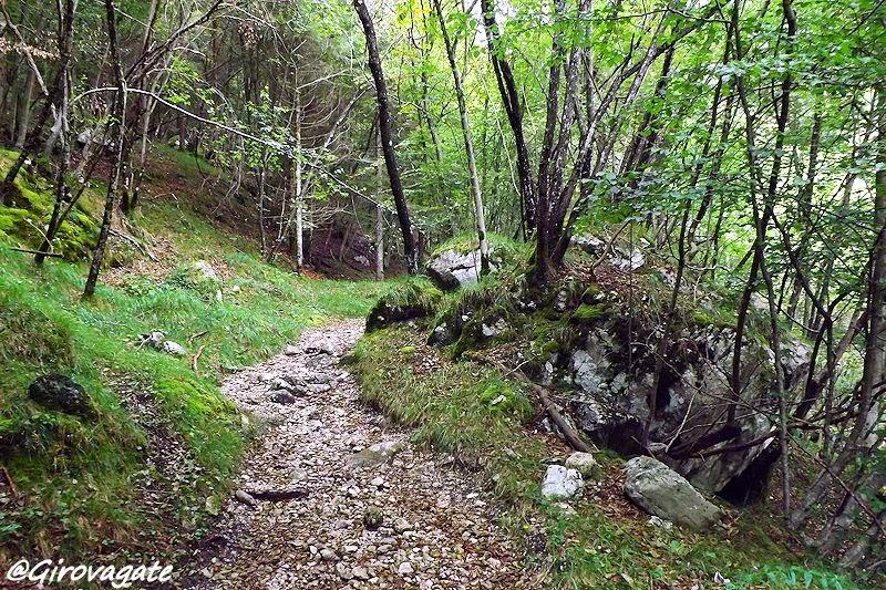 parco dolomiti bellunesi trekking anguane