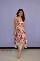 Actress Richa Panai Pos in Sleeveless Floral Long Dress at Rakshaka Batudu Movie Pre Release Function  0057.JPG