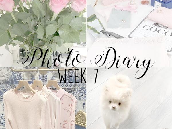 Photo Diary Week 7