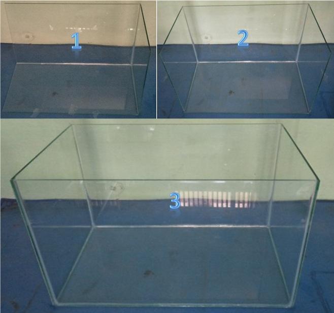 Membuat Aquarium Sendiri Lovedfish