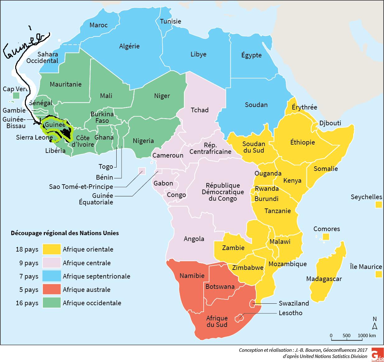 La Guinée et le trafic fauniqueLes Ondes De Guinee