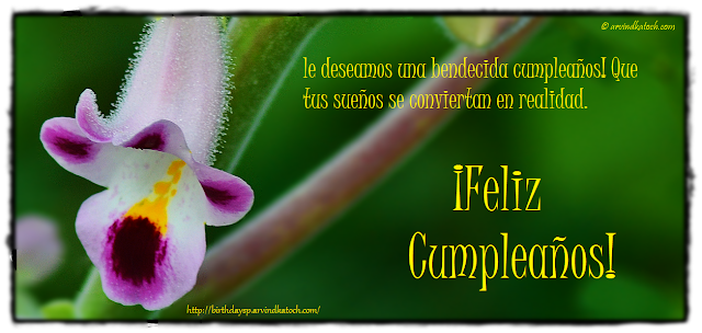 ¡Feliz cumpleaños, Tarjeta, deseamos, bendecida, cumpleaños
