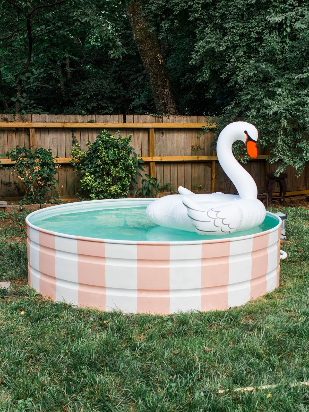 Download Horse Trough Pool Images
