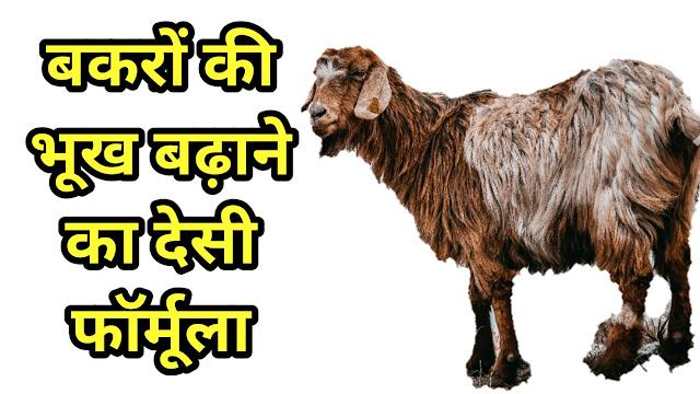 Bakare ki Bhook Badhane Ka Formula
