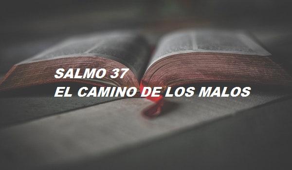 SALMO 37 – EL CAMINO DE LOS MALOS